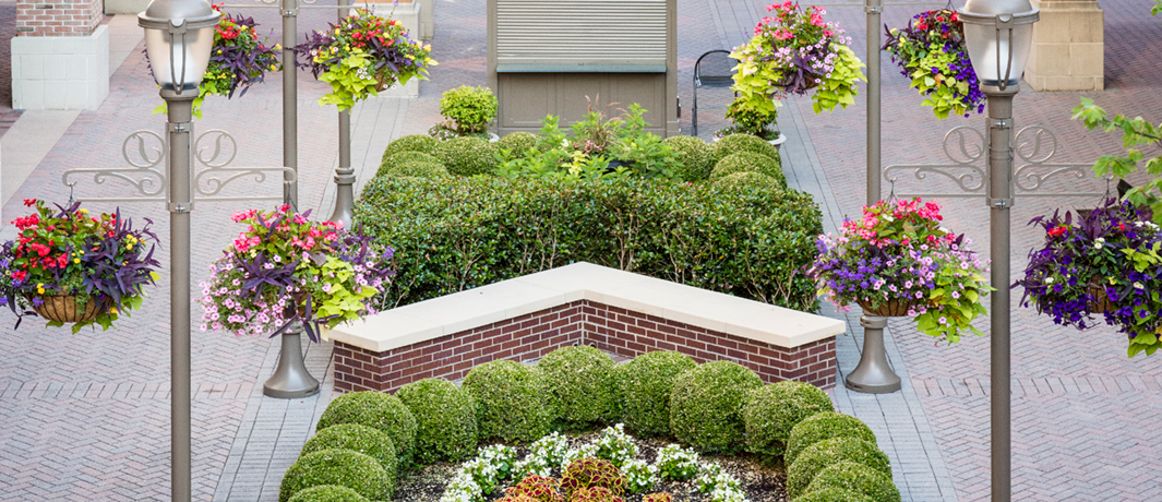 Commercial Landscape Maintenance Services