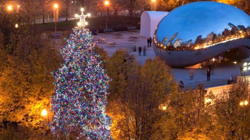 BrightView installs Christmas Tree in Millennial Park