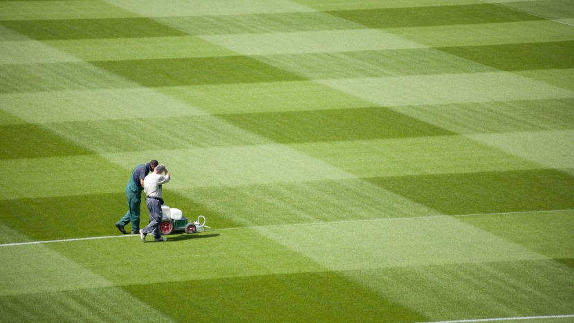 Soccer field grass Aesthetic 123rfcom The Secret To Getting Lawn Stripes In Your Athletic Field