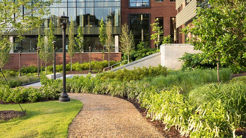 Higher Education Landscaping Cost Savings Infographic | BrightView