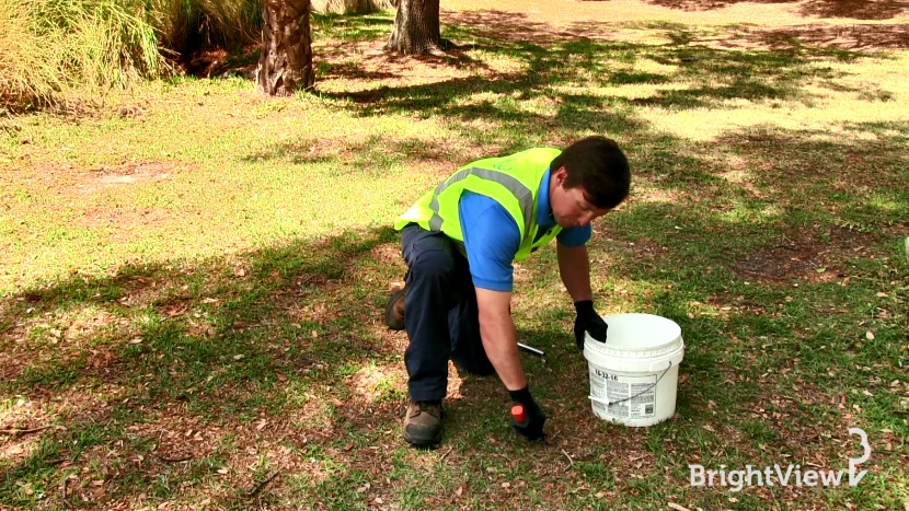 Ask BrightView - Why Should I take a Soil Sample of My Yard?