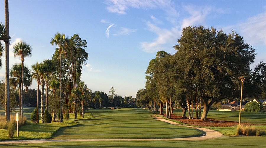 palms and mature trees lining a golf course