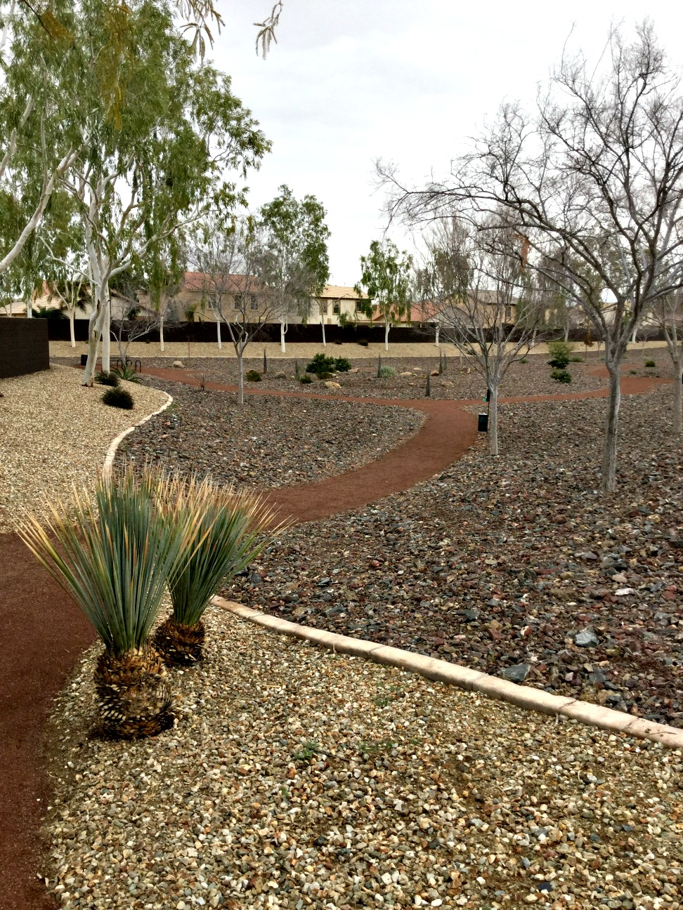 Canyon Trails Arizona xeriscape water savings