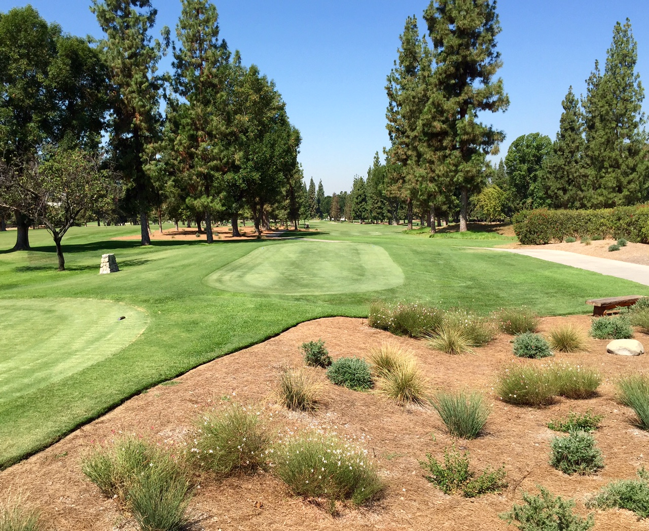 golf course bordered by bed of low-water use plants