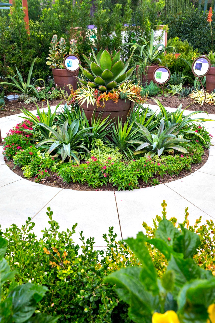 Improve Campus Landscape with Gardens