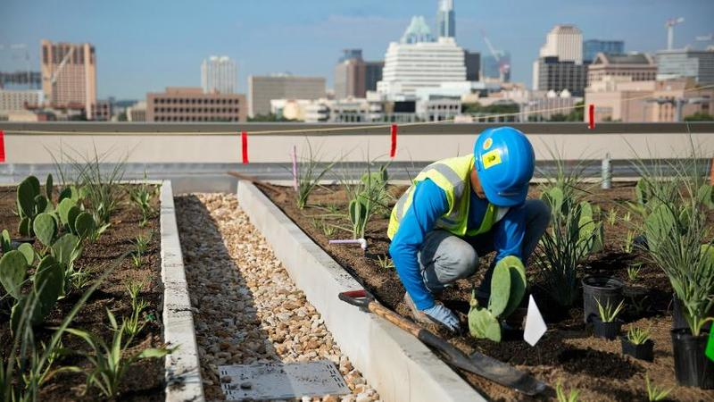 Green Roof Initiatives