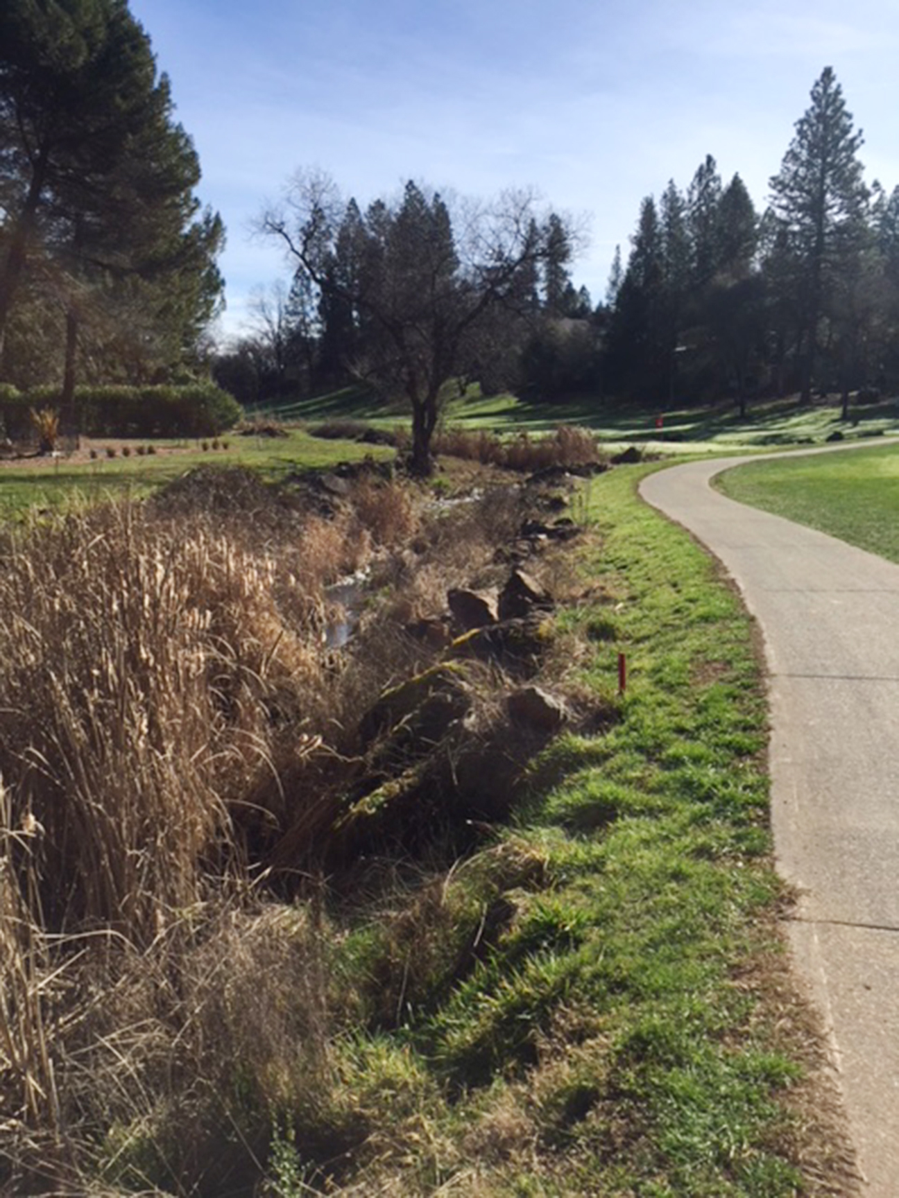 Lake of the Pines Cart Paths