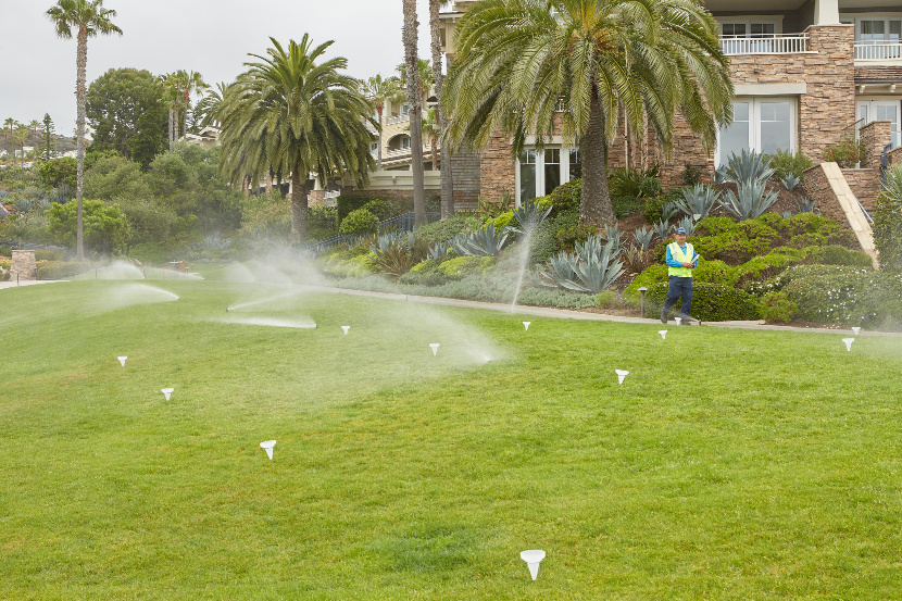 Sprinkler System Irrigation