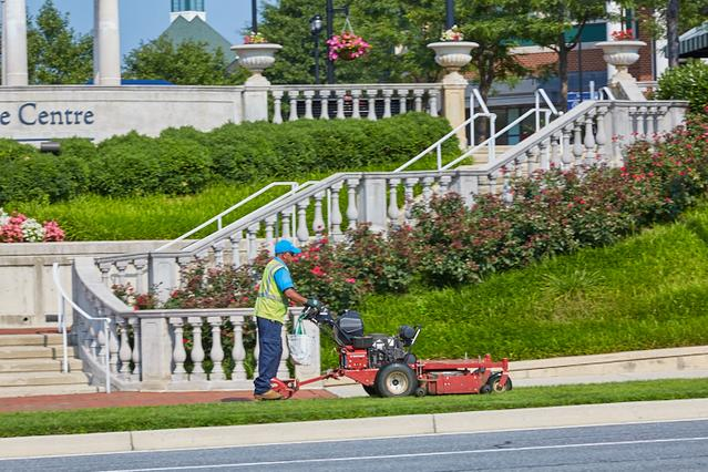 Washington, DC Landscape Maintenance Services