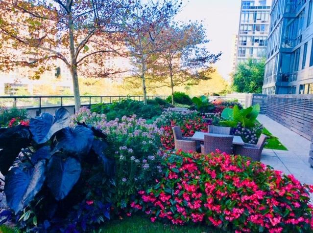 Commercial Landscape Maintenance in New York City