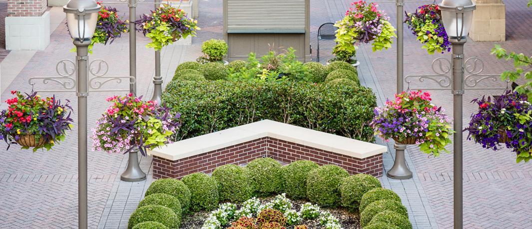 Commercial Landscape Maintenance Services