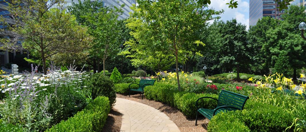 Office Building Landscaping Experts