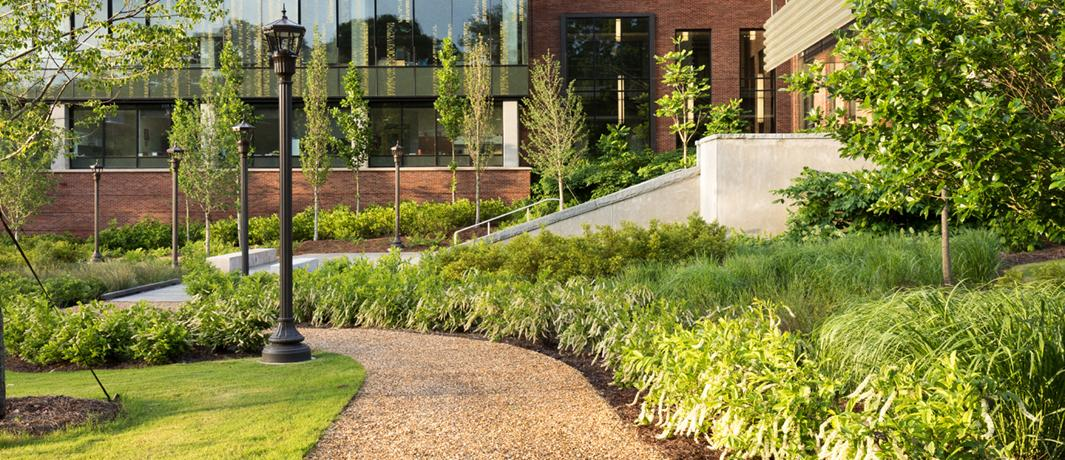 Colleges Campus Landscaping | University Landscapers ...