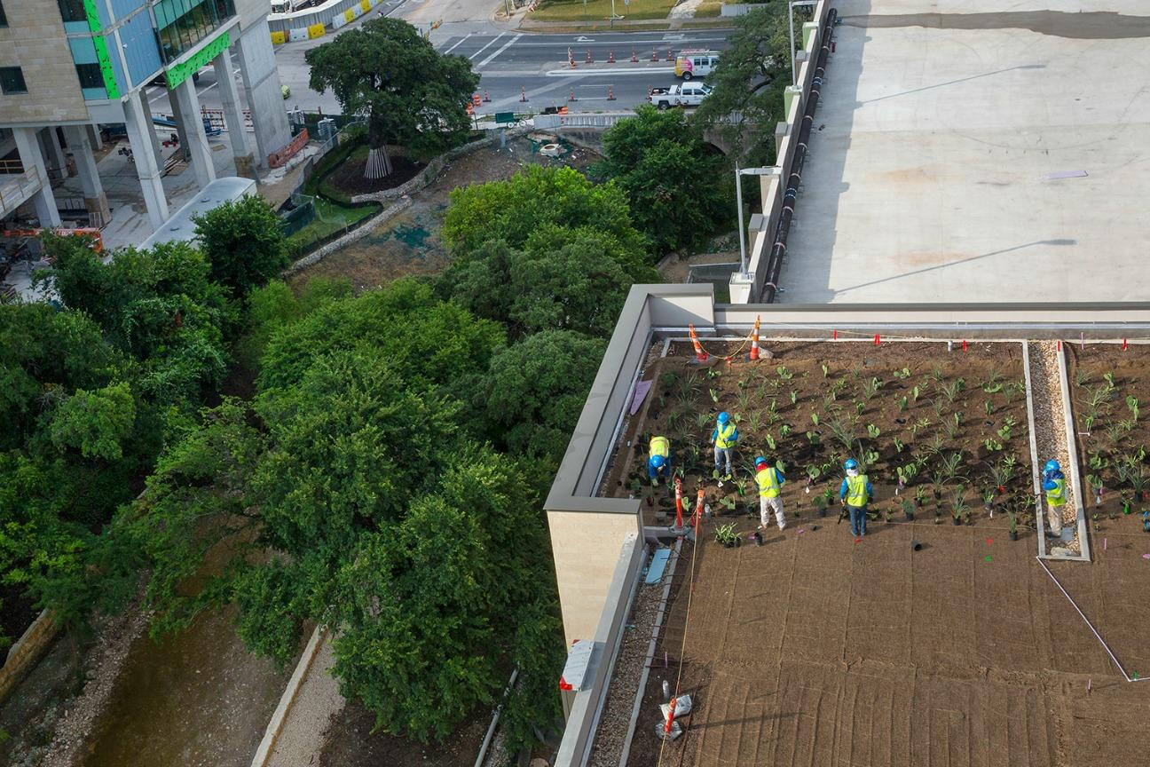 Brightview Installs Innovative Green Roof At Dell Medical