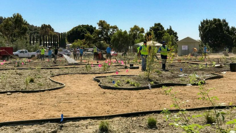 Boys Scouts interactive garden California landscaping