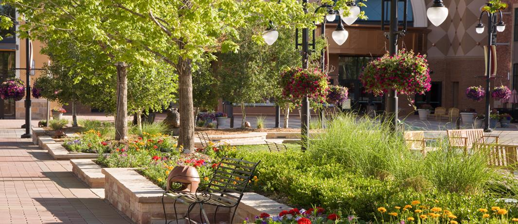 Lifestyle Centers & Mixed Use Landscaping Experts