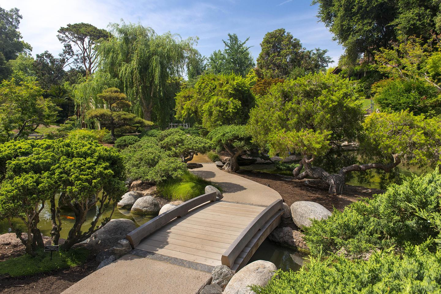 Japanese Gardens At The Huntington Library Projects Portfolio