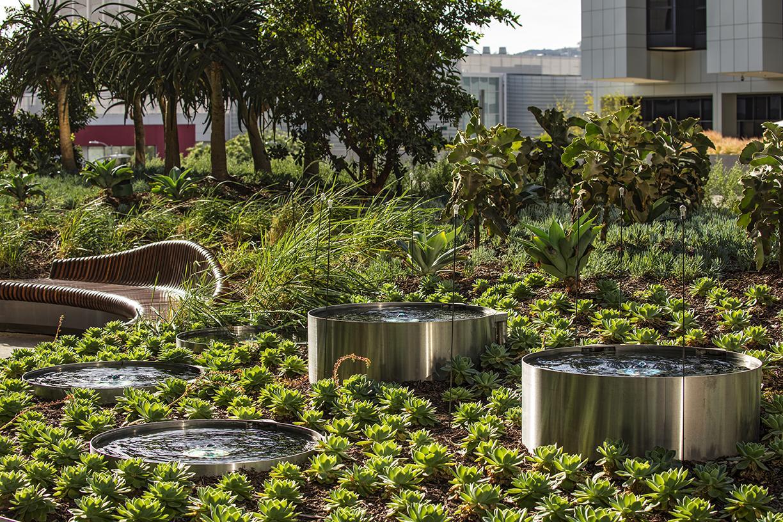 Cedars Sinai Roof Garden | Projects & Portfolio | BrightView