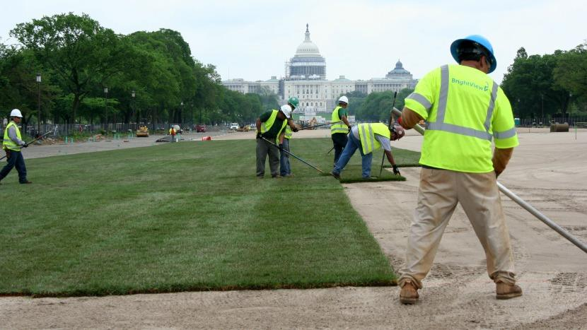 BrightView National Mall turf renovation