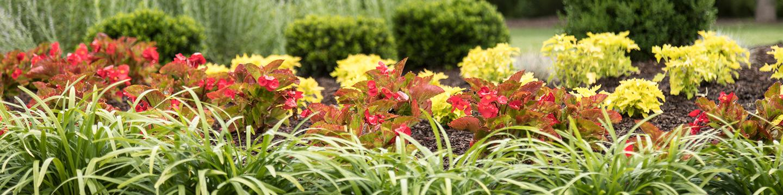 Fairfax Va Landscape Services