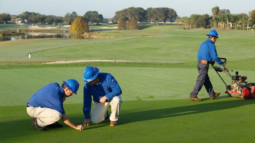 agronomist inspecting golf course turf