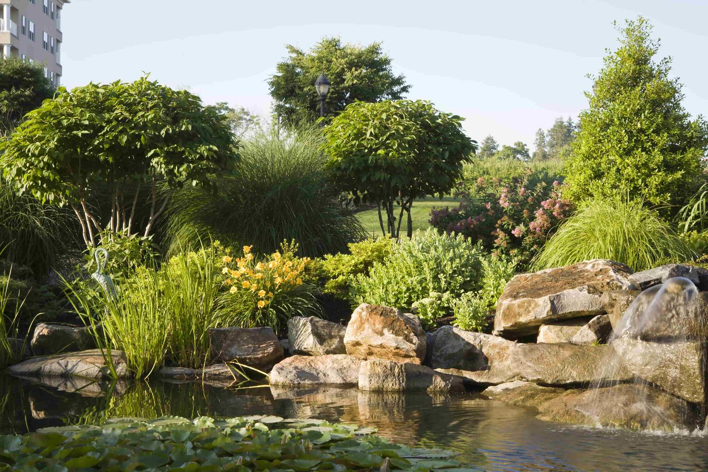 Bellflower, CA Landscape Maintenance