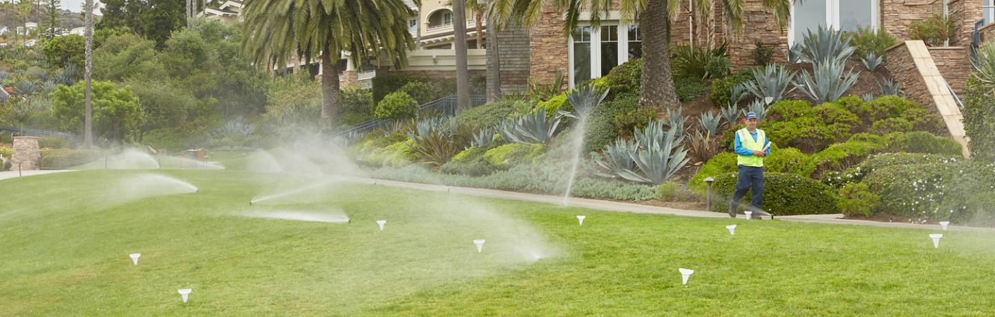 Overcoming Irrigation Damage in Commercial Landscaping