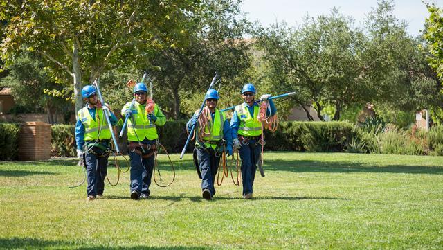 Destin, FL Landscape Services