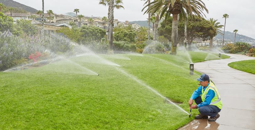 Overcoming Irrigation Damage - Related